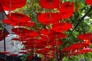 what is a paye umbrella company